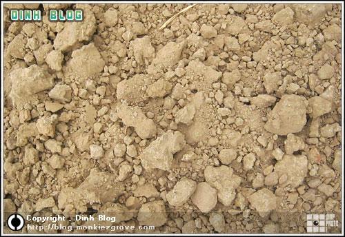 ดินร่วนปนทราย ดินแถวนี้เป็นแบบนี้ทั้งนั้น