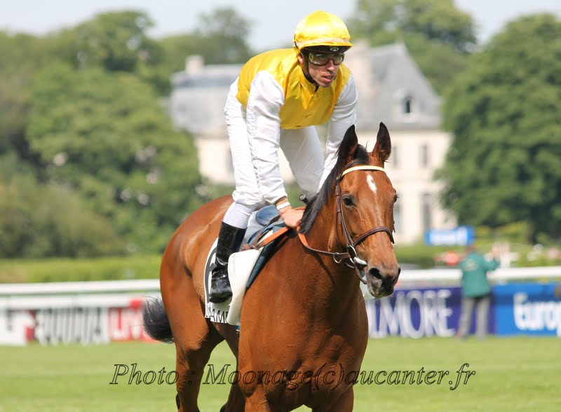 Photos Longchamp 25-05-2014 IMG_1335