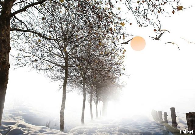 Tạm biệt Mùa Thu - Chào đón Mùa Đông về