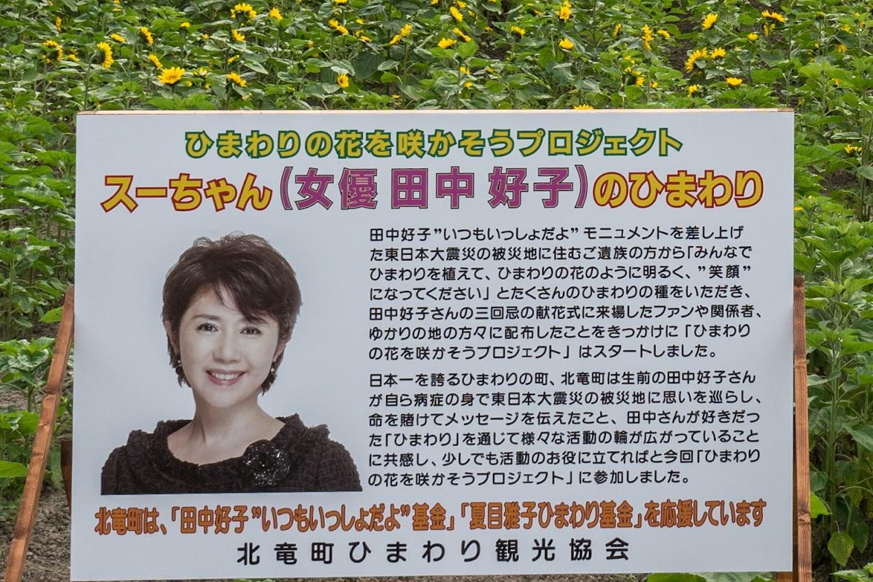 田中好子さんゆかりのひまわりコーナー