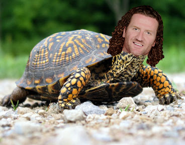 hartnell turtle