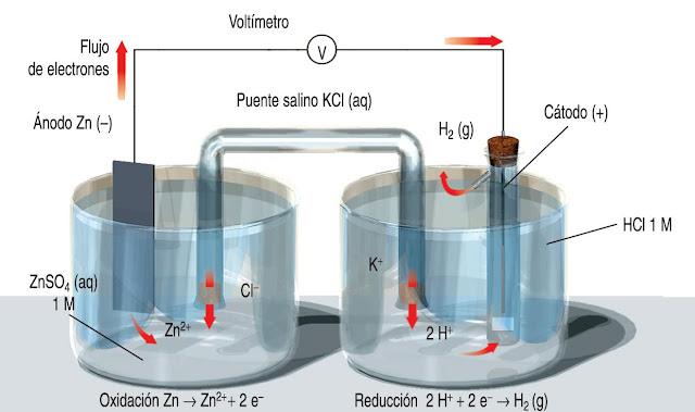 electrodo estándar hidrógeno