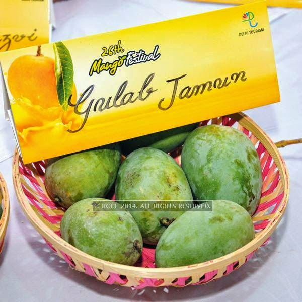 Gulab mango at the 26th Mango Festival, organised by Delhi Tourism at Dilli Haat, Pitampura, Delhi.