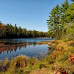 Kanada 7 - Wilno, Park Algonquin