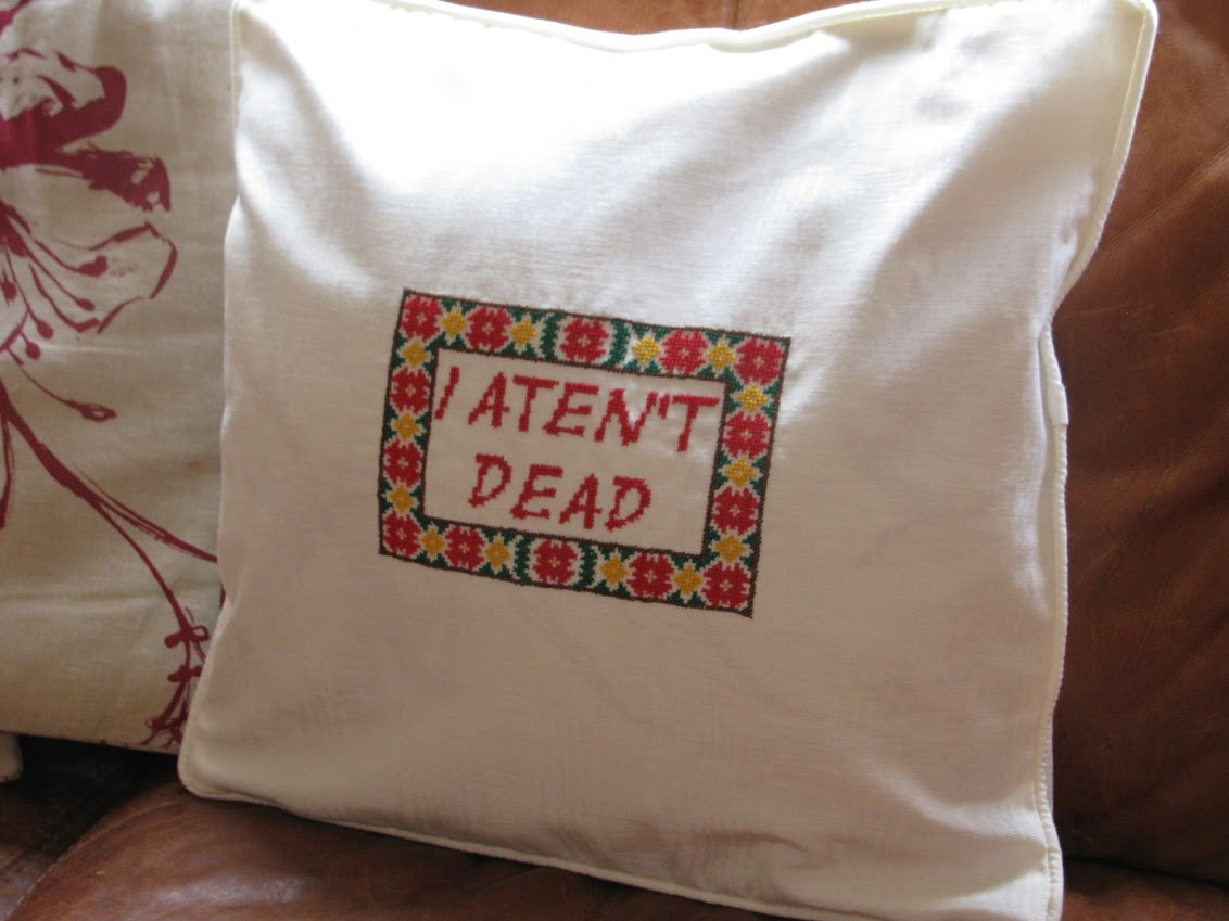 Discworld cushion