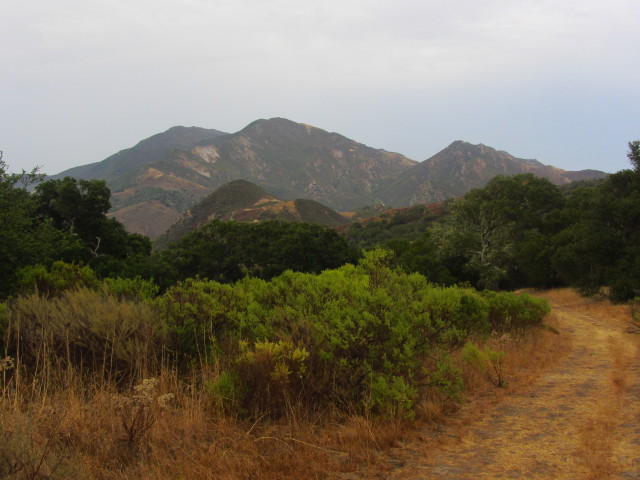 Gaviota Peak and fire road