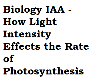 a2 biology coursework light intensity Observing recording full list of what my a2 edexcel biology coursework is on my a2 edexcel biology coursework is on investigating how light intensity affect.