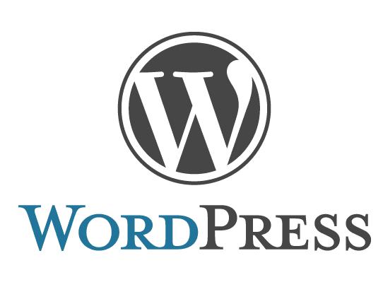 ¿WordPress te pide usuario y contraseña para actualizar? Solución
