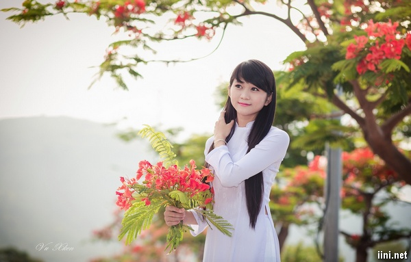 nữ sinh xinh đẹp bên cây phượng mùa hè