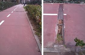 El problema del mantenimiento de los carriles bici