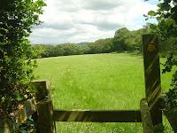 Congleton Edge