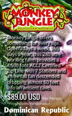 https://lh4.googleusercontent.com/-52Du66NstyA/VCjM6B3kzXI/AAAAAAAAAGk/0SnAFktNfts/w506-h750/monkeyjungle-ad.jpg