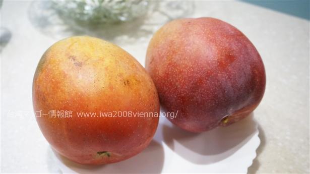 リンゴマンゴー