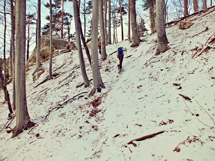peisaj muntii buzaului iarna