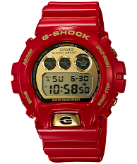 Casio G-Shock : G-2900F-1V