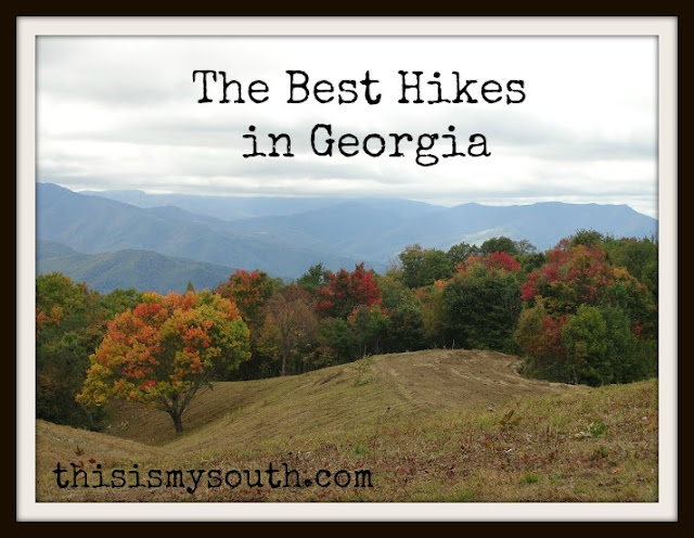 best hikes in georgia