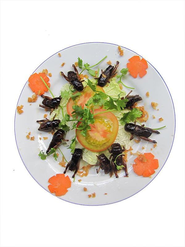 DẾ CƠM:  (Đĩa)    - LĂN BỘT CHIÊN        - CHIÊN NƯỚC MẮM Cricket: Fried with fish sauce- deep fried floured Grillon frits au farine