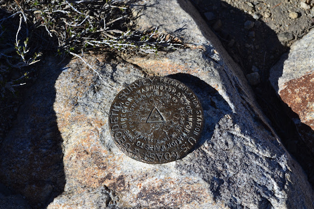 Mt. Pinos benchmark