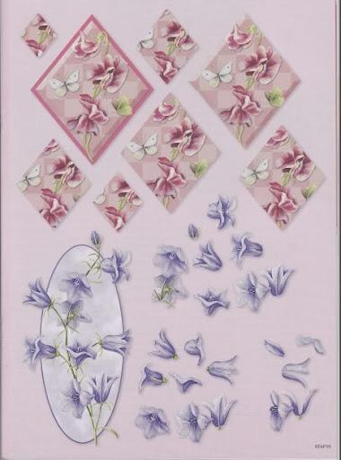 bloemen 5.jpg