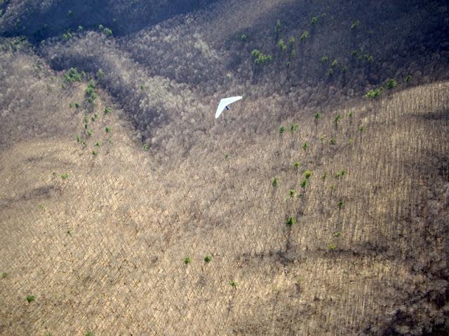 Jeff C soaring above bare trees in April at Rutland
