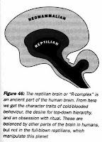 εγκέφαλος ερπετοειδούς,γενετικά μεταλλαγμένοι,υπάνθρωποι,Ισραηλίτες,reptilian brain, genetic mutants, subhuman, Jews