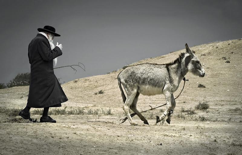 """Фотоконкурс """"Моё открытие Израиля"""": кто победил? _MAX0708-1c%20copy"""