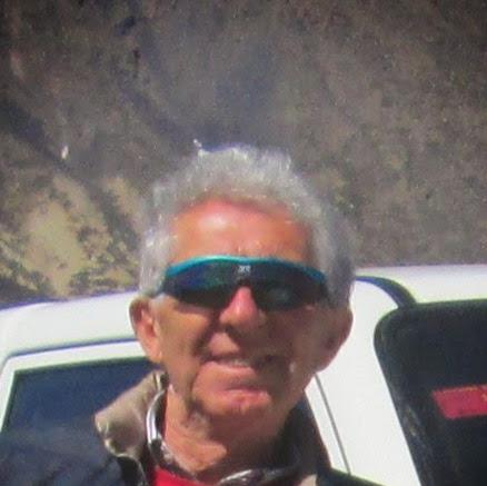 Franco Davoli
