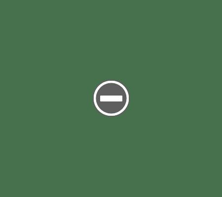 Router Wireless TpLink TL WR841N Router ieftin şi bun   Tp Link TL WR841N