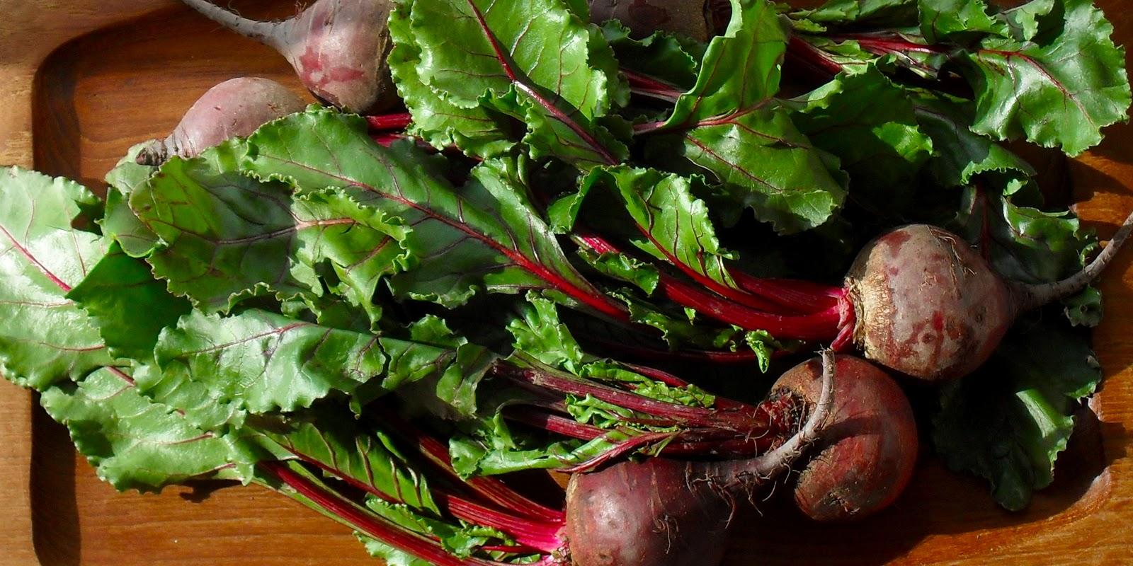 beet greens beet greens raw magnesium