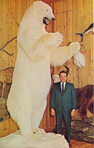 Urso pardo vs Urso polar - Página 2 Tumblr_leywl7F4CT1qbyf2jo1_1280