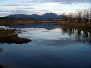 nanaimo river estuary