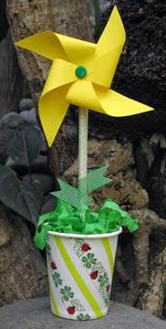 pinwheel flower photo