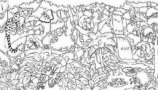 tropical animal coloring pages - photo#14