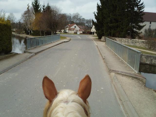 THEME DE DECEMBRE 2012 : les ponts! (3 photos autorisées) - Page 3 IMG475