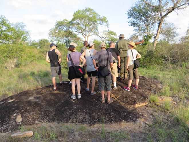 namiddag wandeling - vanaf Skukuza rest-camp, Kruger Park - Zuid Afrika