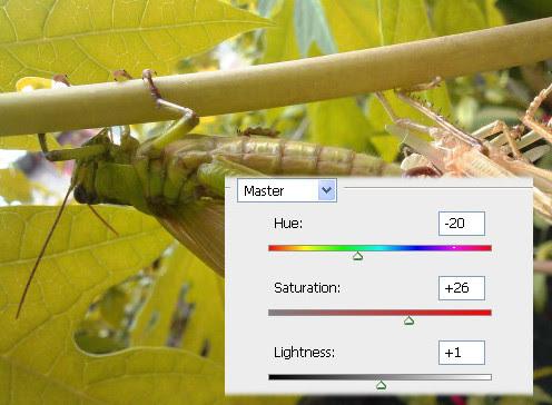 Hue/Saturation pada Photoshop