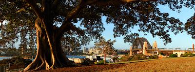 Observatory Hill - Sydney, Australia