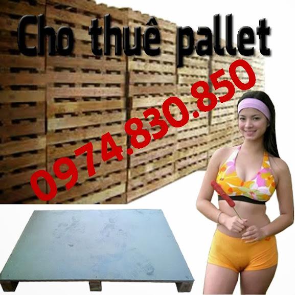 một sản phẩm pallet gỗ nữa được công ty chúng tôi giới thiệu đó là pallet gỗ keo, mới có kích thước 1000 x 1200 x 150 (mm) đây là dòng sản phẩm có thể sử dụng cho các xe nâng tay, nâng máy, chúng được xúc từ 4 hướng, (4 hướng nâng) mà trong một số tỉnh phía nam họ đặt tên loại này là pallet gỗ gù, một cái tên nghe ra có vẻ rất lạ, do điều này mà website của họ lên tốp khá cao, do đặc tính của google là đánh giá những cái lạ và mới, việc chúng có cái tên là pallet gỗ gù đó đã đem lại sự thành công cho web của họ