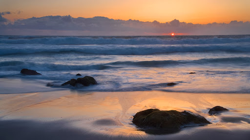 McClures Beach, Point Reyes National Seashore, California.jpg