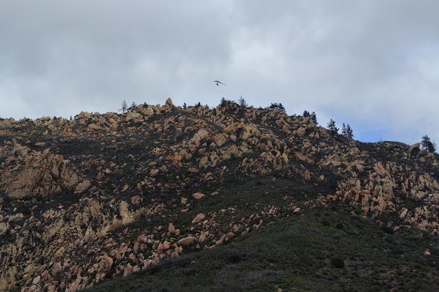 hang glider over the ridge