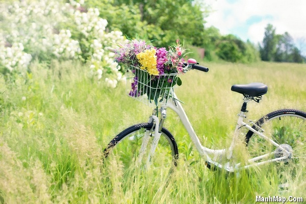 thơ tình lục bát mùa xuân