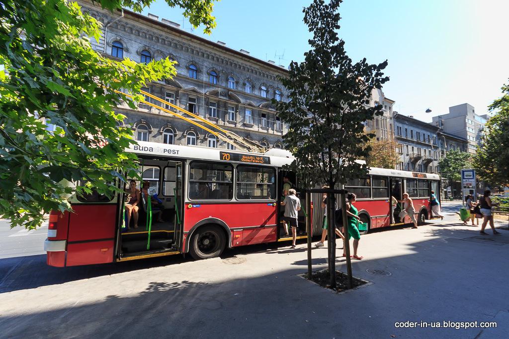 зоо. будапешт