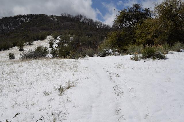 snow over a ridge line meadow