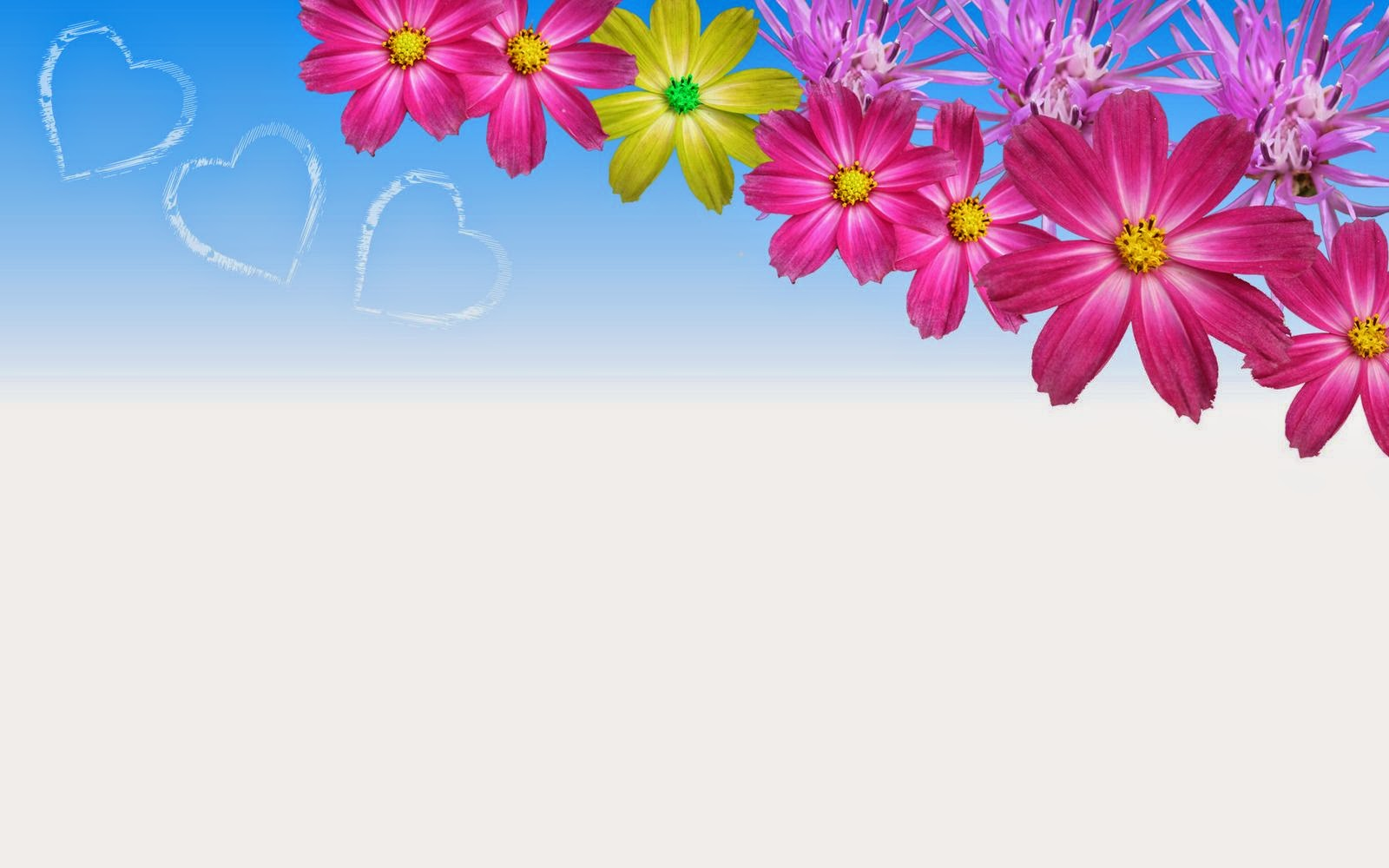 flower-power-wallpaper-aster-blue