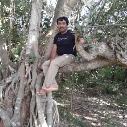 Anil Ani