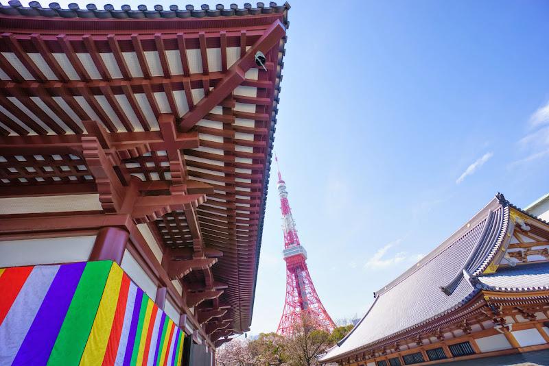 増上寺 写真 5