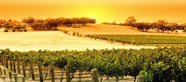 Barossa Valley - Austrália do Sul