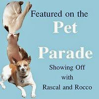 Featured on the Pet Parade Blog Hop