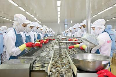 Đơn hàng chế biến thủy sản cần 9 nữ thực tập sinh làm việc tại Hiroshima Nhật Bản tháng 05/2016