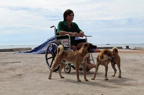 Chó và những câu chuyện để suy ngẫm-15